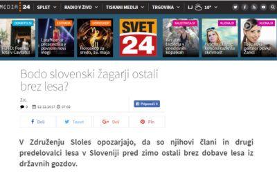 Bodo slovenski žagarji ostali brez lesa?