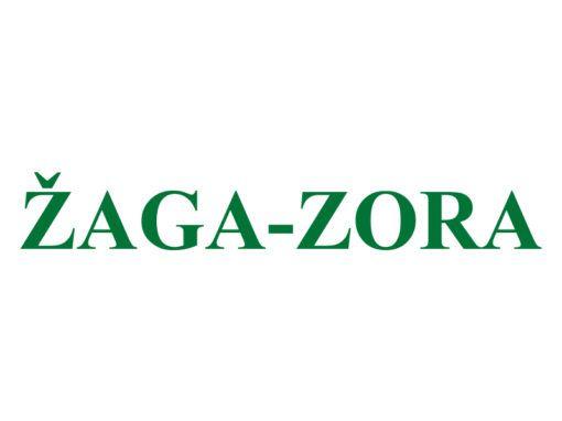 Žaga-Zora